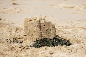 Picture of Sand Castle on a beach