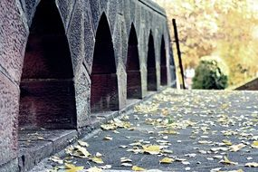 yellow leaves near a stone bridge