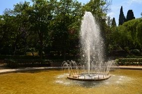 fountain in the park on a background of green trees