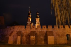 Opole Cathedral in the night city