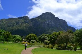 Botanical Garden in Cape Town in South Africa