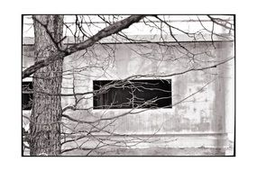 black and white photo of a bungalow with a window