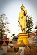 yellow statue in Nan Province