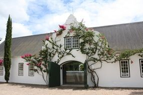winery building in South Africa