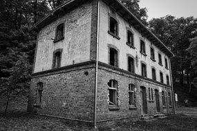 ruins of an abandoned house among nature in black and white image