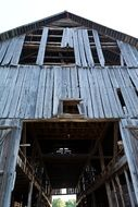 ruined wooden Barn at Farm