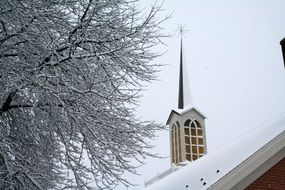 spire of a church near a tree in winter