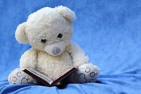 reading teddy bear