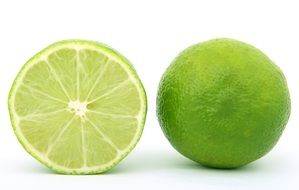 cross section of a lime