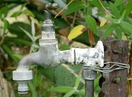 water tap in the garden
