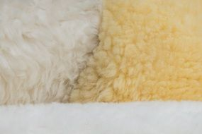 Fur Sheepskin Structure Texture