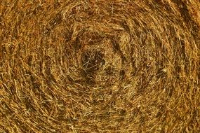background with straw bale
