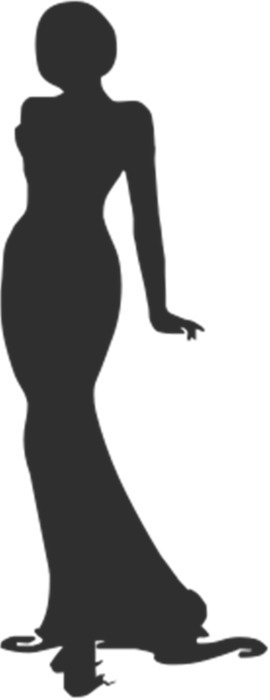 silhouette of a girl in evening dress