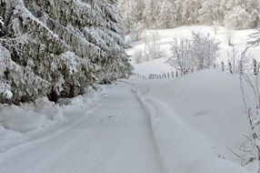 winter road in the mountains near the trees