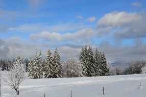 winter landscape under a blue sky with clouds