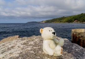 teddy bear on the rock at the shore