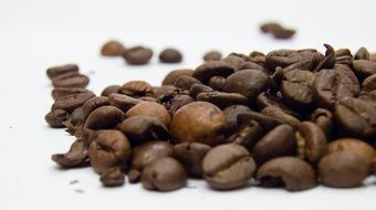 coffee beans of different sizes on a white surface