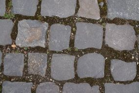 paved grey stones