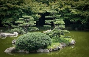 islets with plants on a lake in a japanese garden
