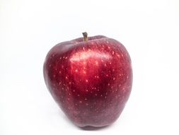 glossy red apple on a white background