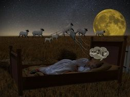 thinking about sheeps to fall asleep