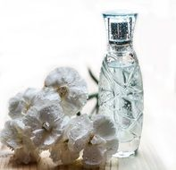 Perfume Bottle Glass Cosmetics