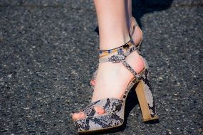 serpentine Woman Shoes