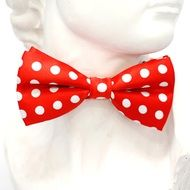 red bow tie with white polka dots