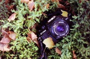 vintage camera in the grass