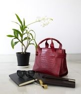 red leather bag, flower in a pot, laptop, wallet, sunglasses and a notebook on the table