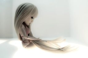Doll with Long Hair