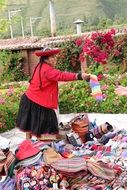 Peruvian woman engaged in craft
