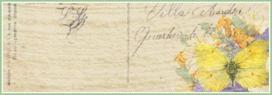 inscription on old paper with flowers and butterflies
