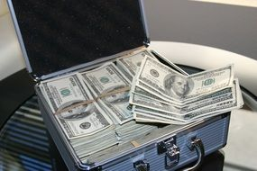 case with bundles of money