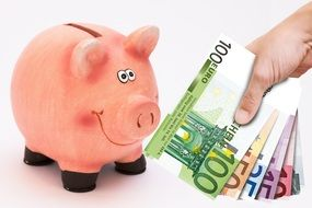 euro banknotes and piggy bank