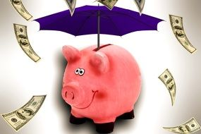 Piggy Bank and umbrella