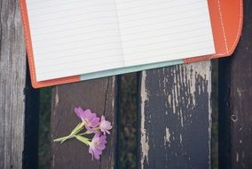notebook on the wooden bench