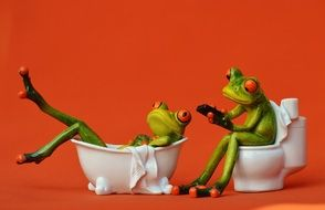 Two frogs in bathroom