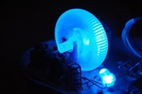 Blue electronic light