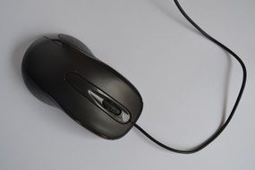 Black mouse for computer