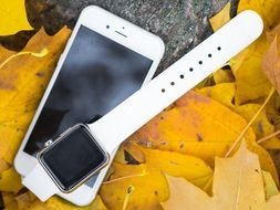 iPhone and Iwatch on the autumn leaves