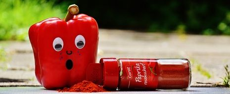 picture of the red Paprika spice