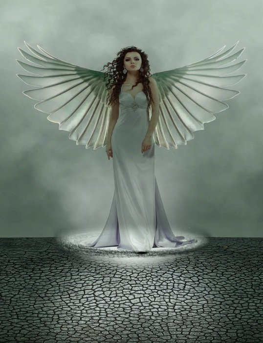 Angel, Fantasy winged Woman in long dress, illustration