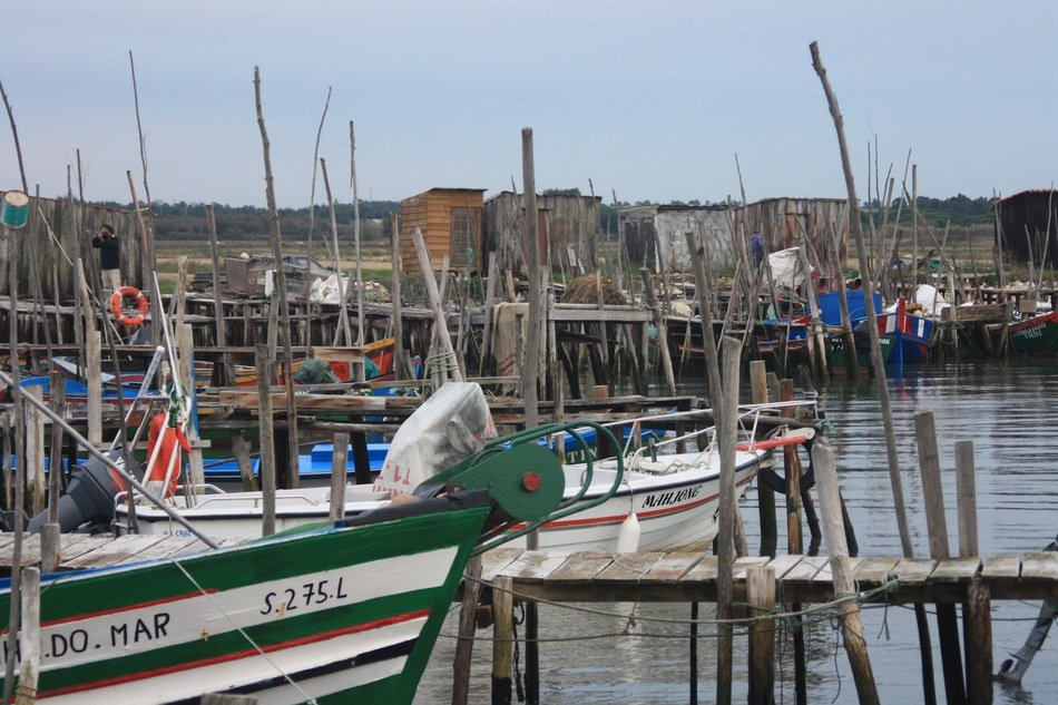 boats at wooden pier