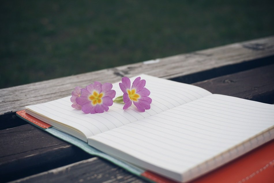 Notebook and flowers are on the wooden bench