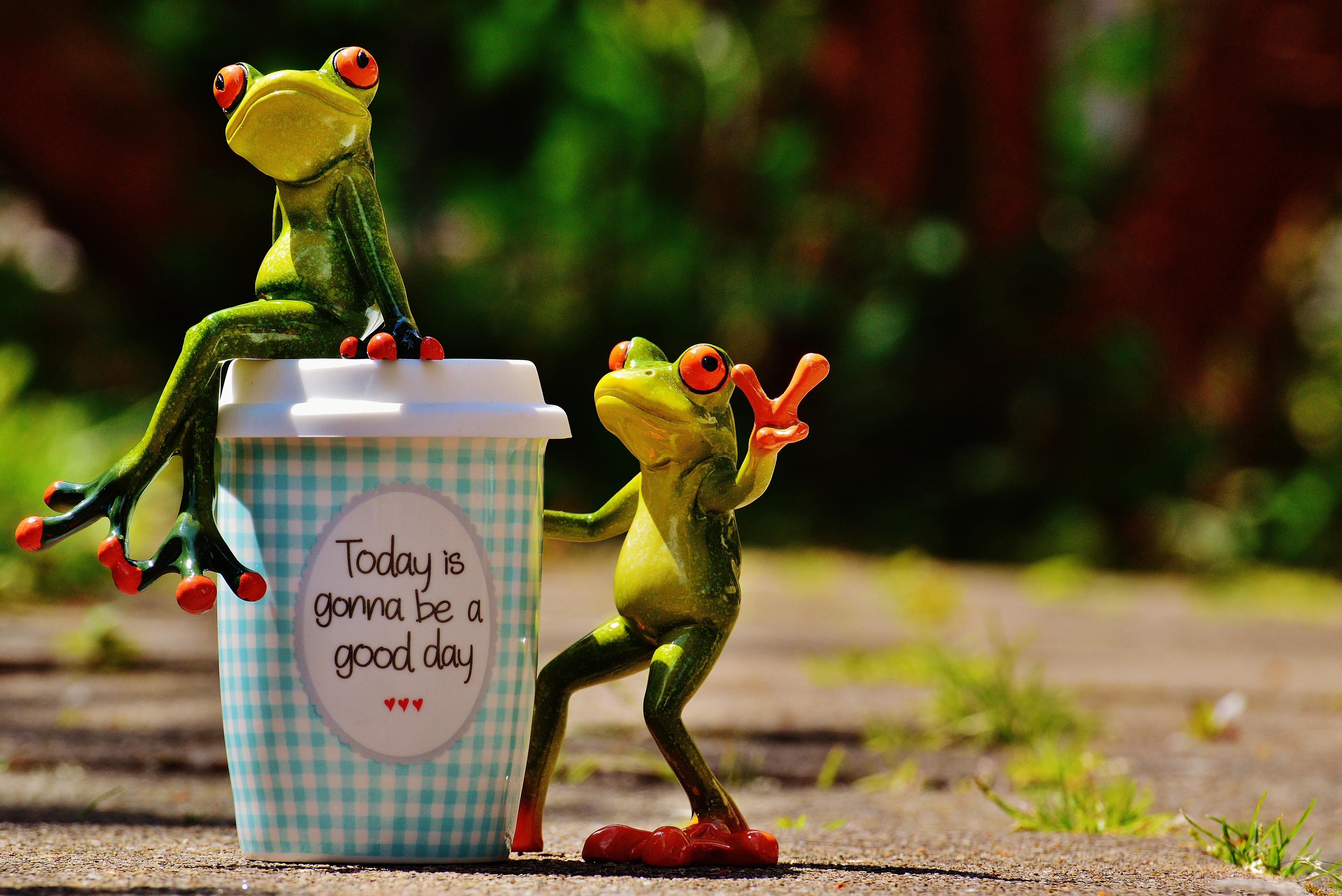Днем, открытка удачного дня подруга