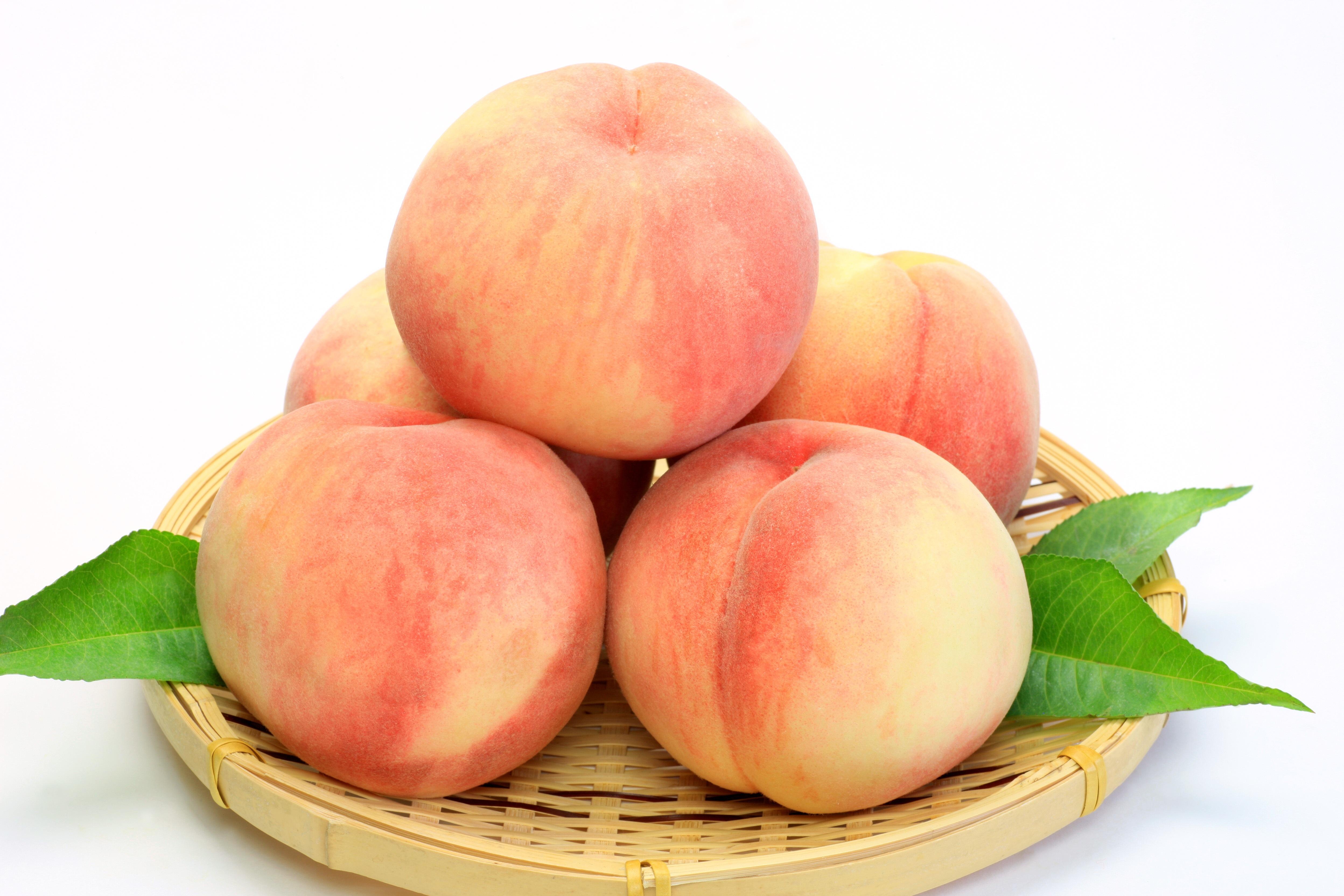 Белый персик картинка