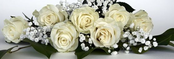 banner with white roses bouquet