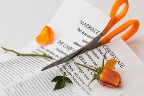 scissors cut marriage certificate