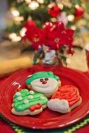 bright christmas cookies on a red plate